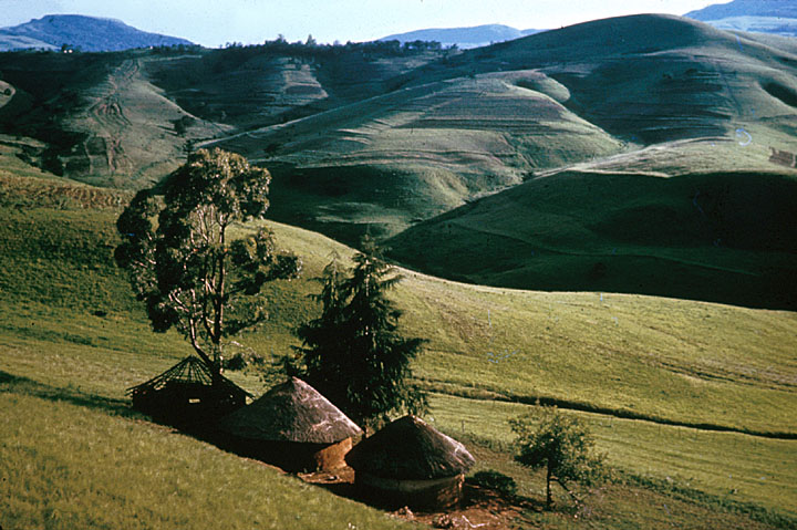 Two Houses in the Transkei. Image courtesy Africa Focus.