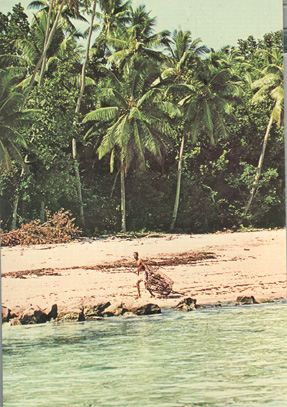 postcard-beach