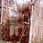 Barn for Drying Yams