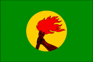 Republic of Zaire Flag