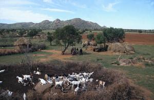 Rural Scene, Botswana