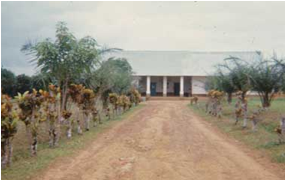 Health Center in Central Africa