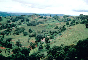 Isolated Homesteads Burundi