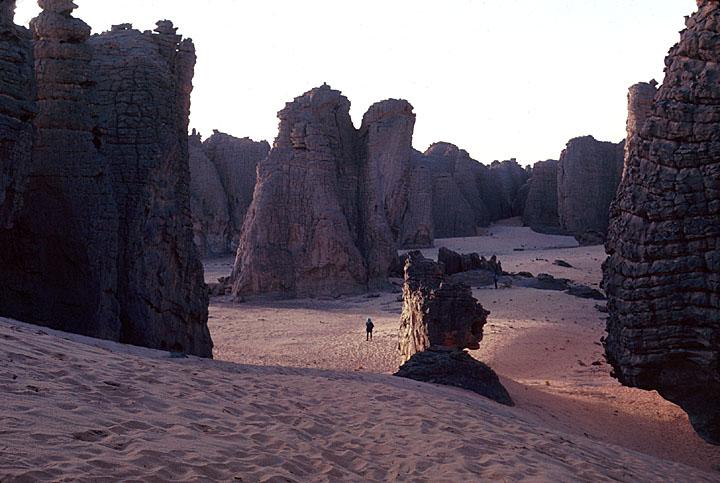 Libyan Desert Scrub