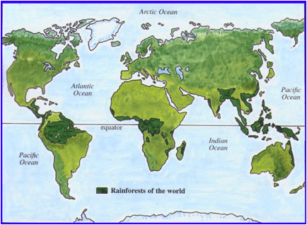 Map of World Rainforests
