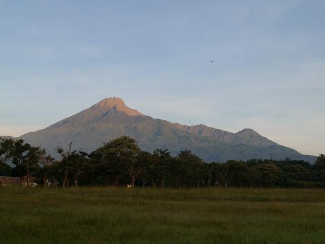 Meru at Dawn