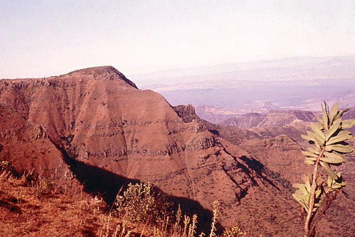Rift Valley Scene