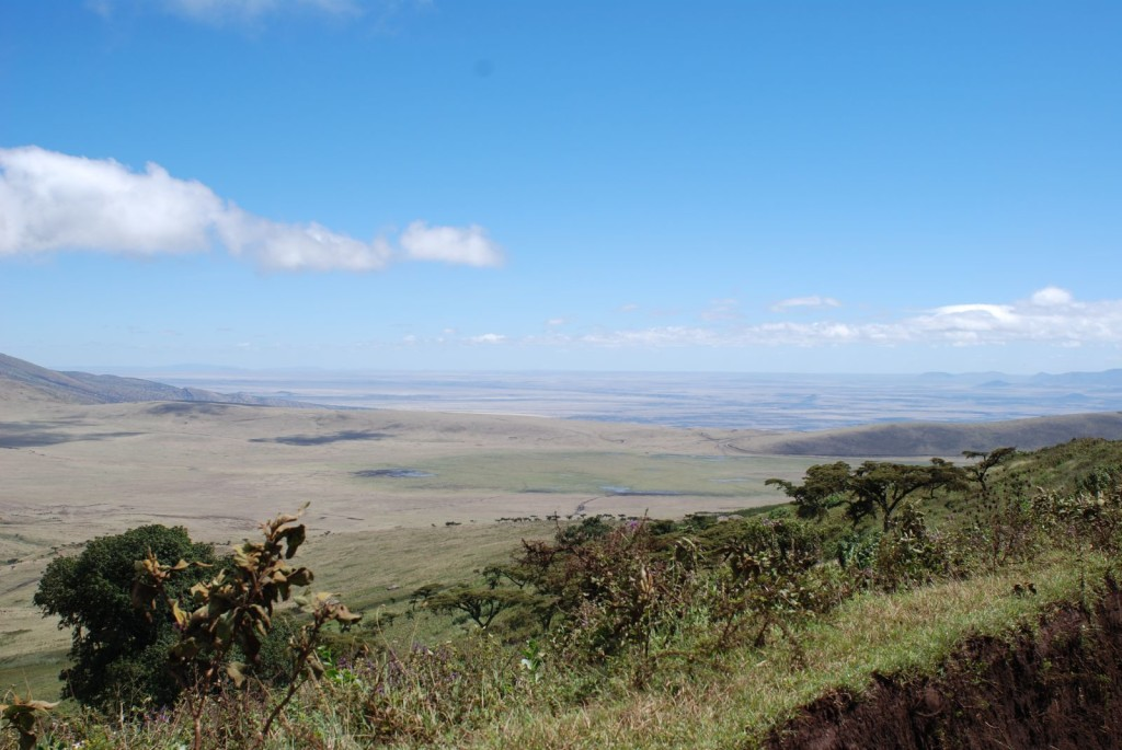 View of the Great Rift Valley