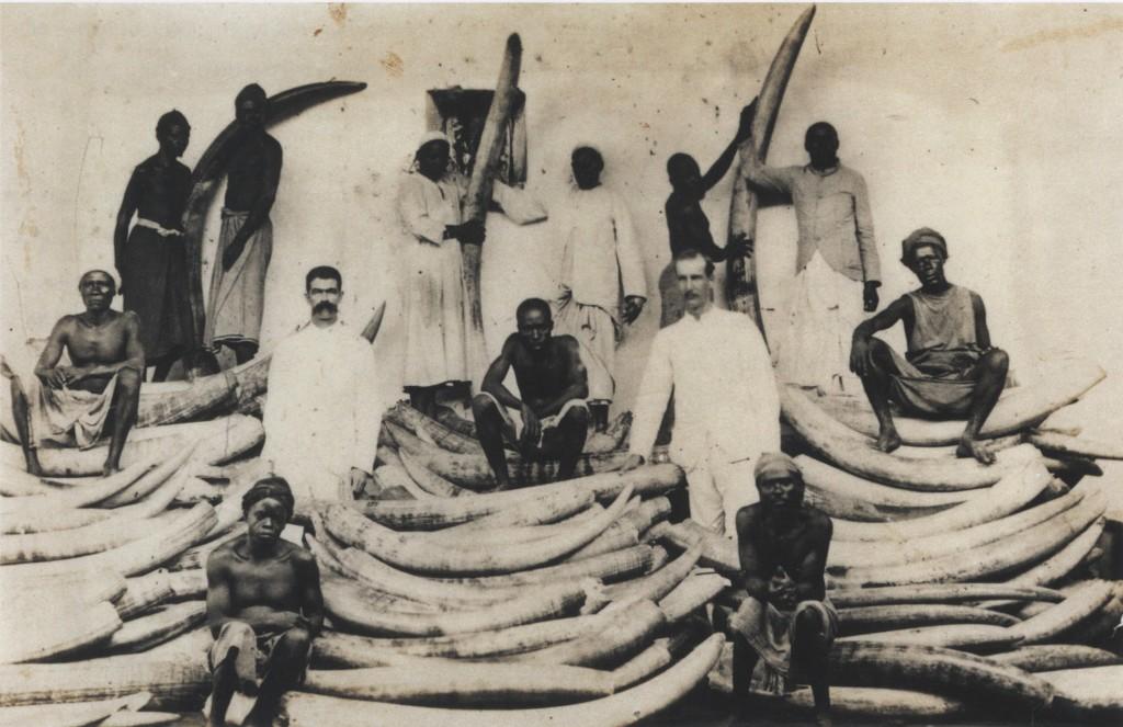 Ivory Warehouse