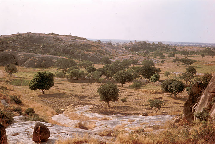 Landscape Zaria