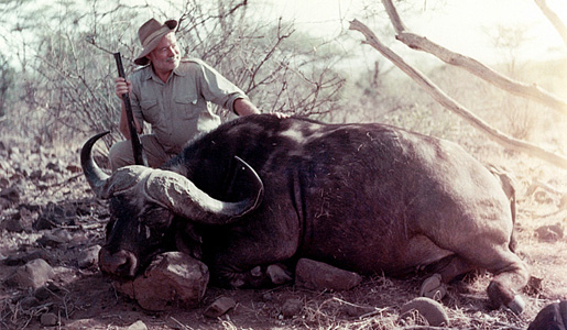 EH 266T  Ernest Hemingway poses with a water buffalo in Africa, 1953-1954.  Photograph in the Ernest Hemingway Photograph Collection, John F. Kennedy Presidential Library, Boston.
