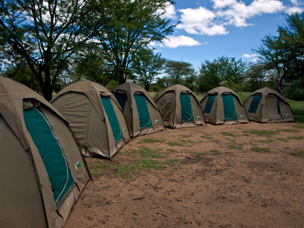 Row of tents at the Ngiri Campsite, Serengeti National Park, Tanzania