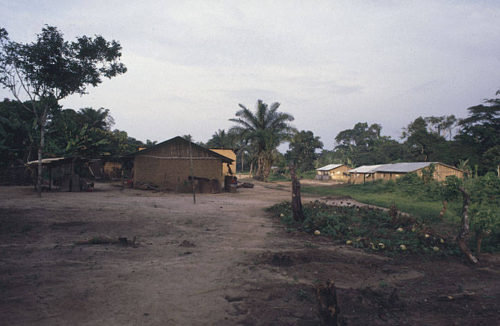 Mission School in Northern Belgian Congo African Focus: Sights and Sounds of a Continent